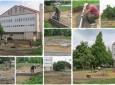 Ingyenes szabadtéri sport- és szabadidőpark épül Vásárosnaményban
